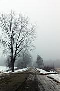 Cathy  Beharriell - Into The Fog