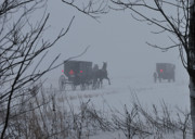 Horse And Buggies Prints - Into the fog Print by David Arment
