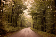 Mountain Road Photo Prints - Into The Mists Print by Lois Bryan