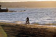 Beach Cruiser Photos - Into the Sunset by Jason Evans