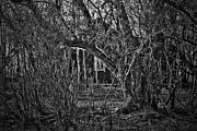 Haunted Barn Photos - Into The Wilderness by Jerry Cordeiro