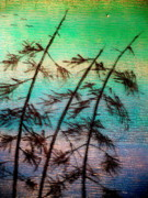 Ocean  Glass Art Originals - Into the Wind by Rick Silas