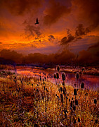Fall Leaves Prints - Intuition Print by Phil Koch