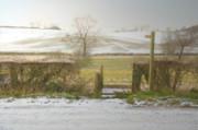 Invitation To A Winter Walk Print by Aleck Rich Seddon