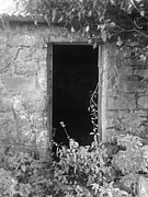 Melanie Cochrane-fallon Metal Prints - Ireland- a ruin of a shed with a tin roof- Galway Metal Print by Melanie Cochrane-Fallon