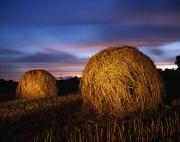 Bale Metal Prints - Ireland Hay Bales Metal Print by Richard Cummins