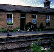 Ireland Series - Crossing Station Dog Print by Jim Pavelle