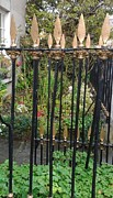 Painted Garden Gate Framed Prints - Ireland- Victorian gold speared garden gate- Galway Framed Print by Melanie Cochrane-Fallon