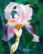 Backlit Painting Framed Prints - Iris 1 Framed Print by Marilyn Jacobson