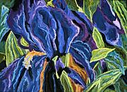 Purple Flowers Pastels - Iris Flowers Series No1 by Mary Jane Erard