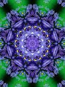 Purple Paintings - Iris Kaleidoscope by Roxy Riou