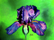 Red Spring Flower Metal Prints - Iris Metal Print by Laura Bell