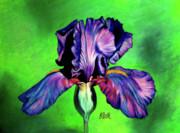 Iris Print by Laura Bell