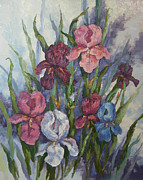 Iris Print by M J Weber