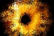 Eyeball Prints - Iris Print by Michael Garyet