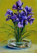 Pebbles Drawings Prints - Iris on the Rocks Print by Outre Art Stephanie Lubin