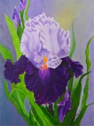 Print Like Paintings - Iris by Peggy Holcroft