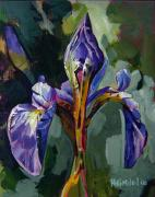 Grande Drawings Framed Prints - Iris Snow Framed Print by Tim  Heimdal