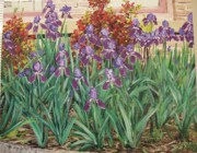 Arkansas Paintings - Irises Fort Smith Art Center 2 by Sharon  Gonzalez