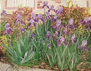 Arkansas Paintings - Irises Fort Smith Art Center by Sharon  Gonzalez