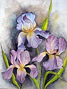Shagufta Mehdi - Irises In Purple