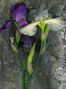 Visionary Artist Digital Art Framed Prints - Irises with Lace Framed Print by George  Page