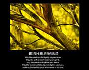Raindrops Prints - Irish Blessing Print by Bonnie Bruno