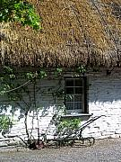 Charming Cottage Prints - Irish Farm Cottage Window County Cork Ireland Print by Teresa Mucha