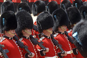 Dress Uniform Framed Prints - Irish Guards March Pass During The Last Framed Print by Andrew Chittock