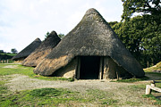 Celts Metal Prints - Iron Age Roundhouse Metal Print by Sheila Terry