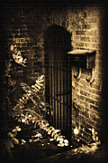 Basement Art Framed Prints - Iron Door Sepia Framed Print by Kelly Hazel