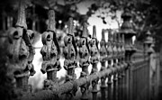 Fleur De Lis Art - Iron Fence 2 by Perry Webster