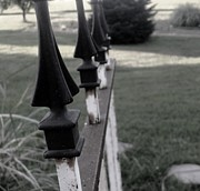 Iron Fence Print by Ali Dover