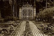 Iron Gate Print by Amarildo Correa