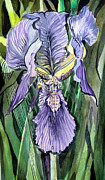 Gardening Drawings Originals - Irresistable by Mindy Newman