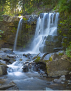 Crested Butte Prints - Irwin Falls Print by Dusty Demerson
