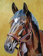 Horse Portraits Prints - Isabella Print by Anne West
