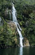 Beagle Photos - Isla Hoste Waterfall by Larry Dale Gordon - Printscapes