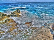 Shinny Prints - Isla Mujeres IV Print by Jimmy Ostgard