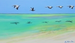 Pelican Painting Originals - Islamorada Five by Anne Marie Brown