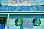 Fish Print Prints - Island Aquarium Print by Steven Ainsworth