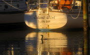 Docked Boats Metal Prints - Island Girl Metal Print by David Lee Thompson
