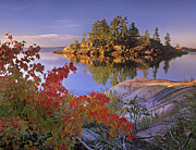 Killarney Provincial Park Prints - Island In Georgian Bay Lake Huron Print by Tim Fitzharris