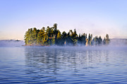 Pines Prints - Island in lake with morning fog Print by Elena Elisseeva