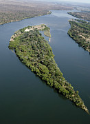 Zambesi River Prints - Island On The Zambezi River Print by Tony Camacho