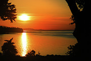 Hornby Island Photos - Island time by Dene Rossouw