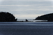 Topaz Originals - Islands in the Rain--BC North Coast by Evan Spellman