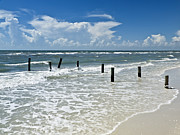 Gulf Of Mexico Prints - Isnt life wonderful? Print by Melanie Viola
