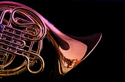 Perform Art - Isolated French horn by M K  Miller