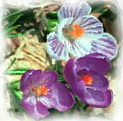 Digitally Enhanced Photographs - Ist flowers in the garden 2010 by David Lane